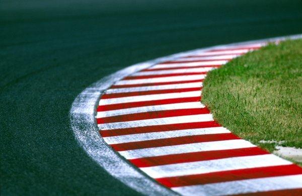 The Suzuka kerbing.Japanese Grand Prix, Rd17, Suzuka, Japan. 14 October 2002.