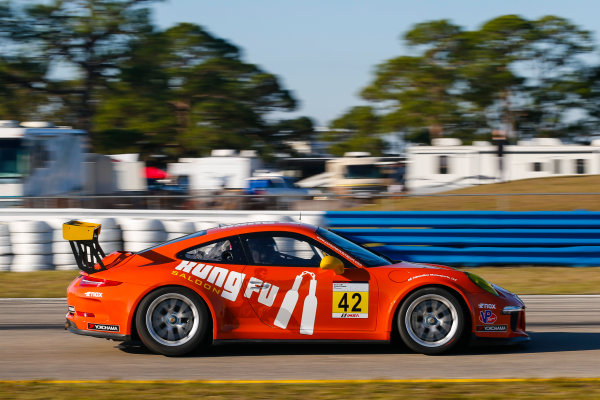 2017 Porsche GT3 Cup USA Sebring International Raceway, Sebring, FL USA Wednesday 15 March 2017 42, Bill Smith, GT3G, USA, 2014 Porsche 991 World Copyright: Jake Galstad/LAT Images ref: Digital Image lat-galstad-SIR-0317-14868