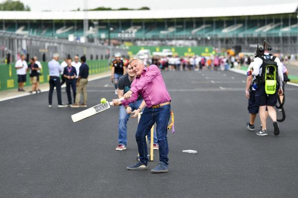 Johnny Herbert, Sky TV plays cricket