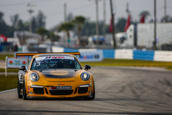 16-18 March, 2016, Sebring, Florida, USA 13, Orey Fidani, Platinum, 2015 Porsche ?2016, Jake Galstad LAT Photo USA