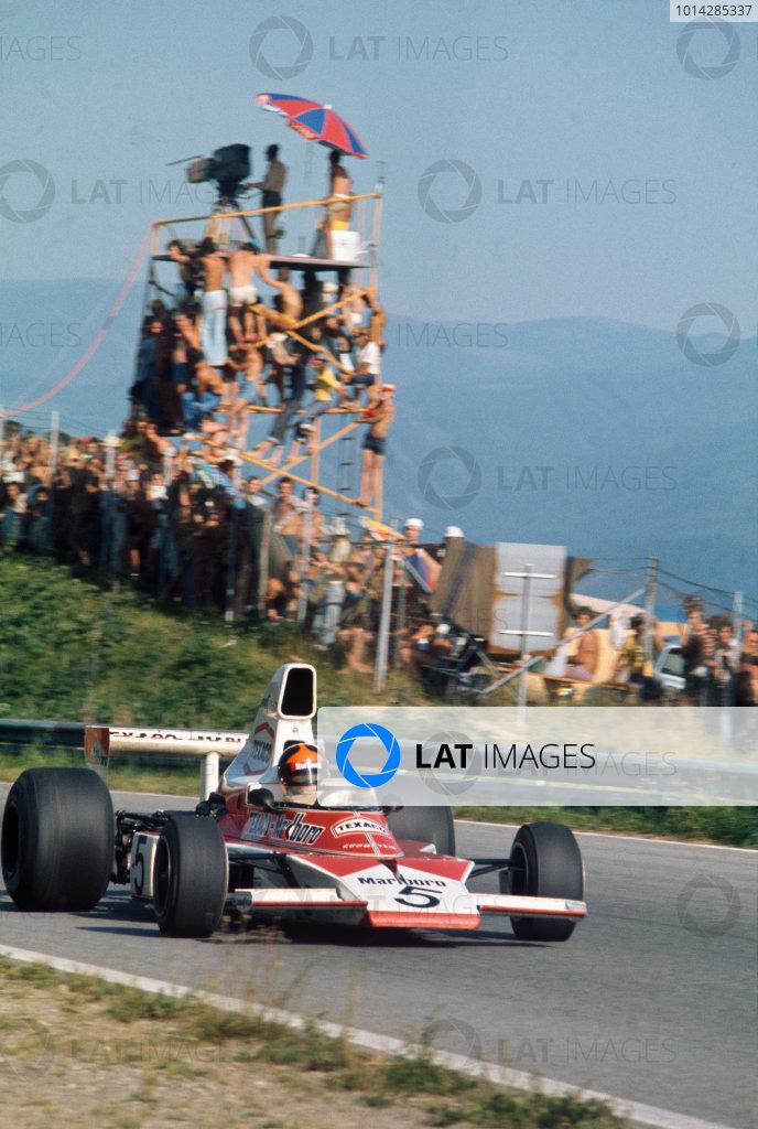 1974 Formula 1 World Championship