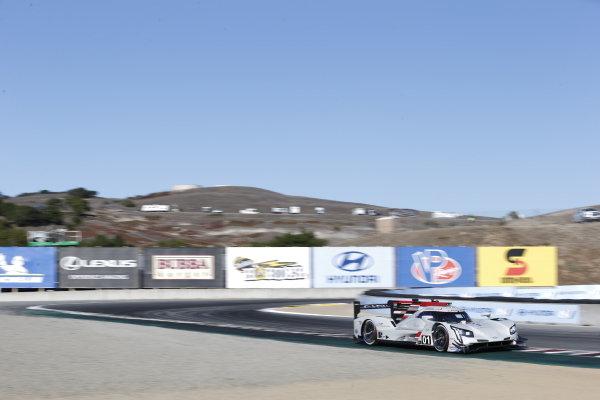 #01: Cadillac Chip Ganassi Racing Cadillac DPi, DPi: Renger van der Zande, Kevin Magnussen