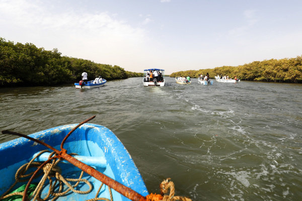The Oceanium Mangrove Legacy Project Visit boat trip